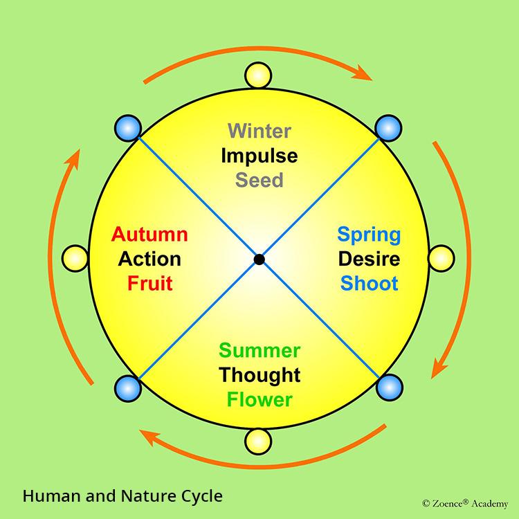 Human and Nature Cycle