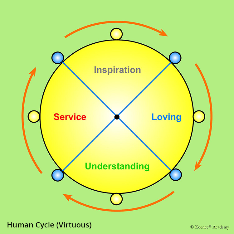 Human Cycle (Virtuous)