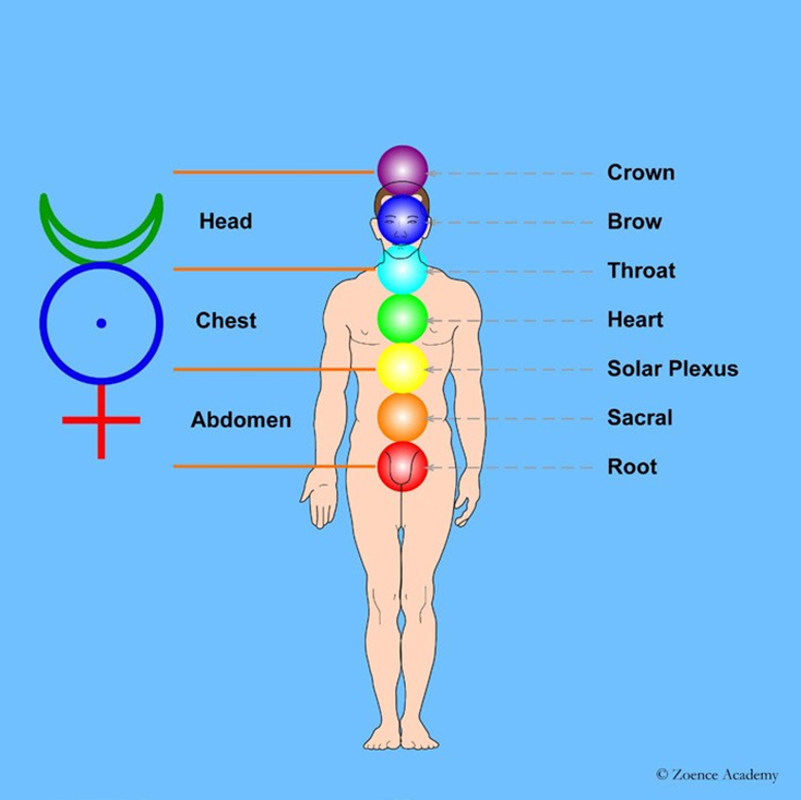 Human: Major chakras